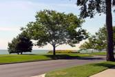 Lake Shore Road -- Grosse Pointe Board of Realtors